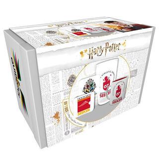 Caja Regalo Quidditch Harry Potter-