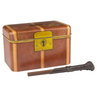 Hucha Llave Varita Harry Potter-